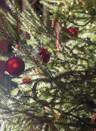Event Weihnachtsfeier Hamburg